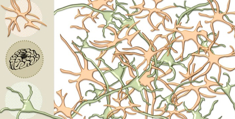 From Neurons to Astrocytes: The Shift of Focus in Stroke