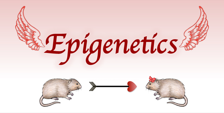 The Newest Cupid on the Block: Epigenetics