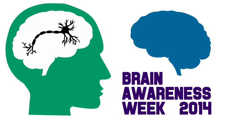 This Week is Brain Awareness Week