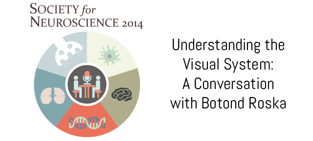 Understanding the Visual System: A Conversation with Botond Roska