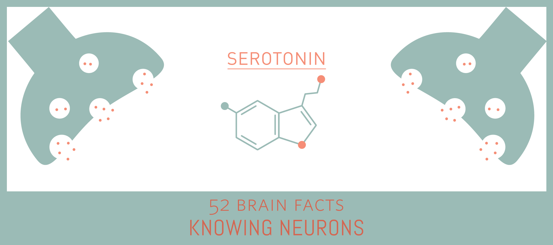 Myth or Fact? The neurotransmitter serotonin is solely located in the brain.