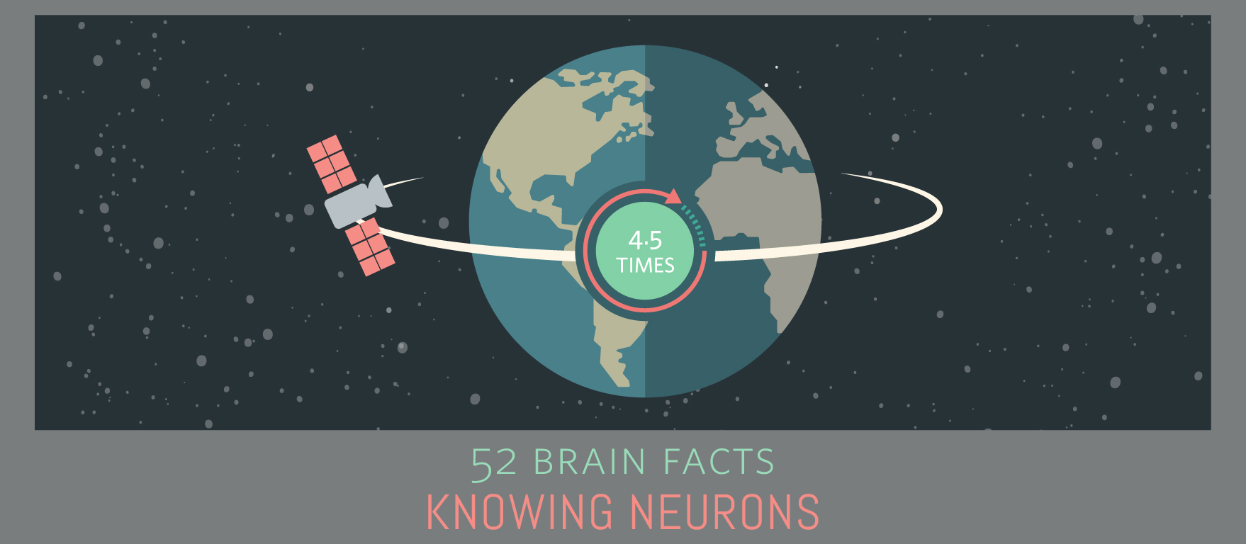 Myth or Fact? An adult brain has enough myelin to stretch from New York to Tokyo.