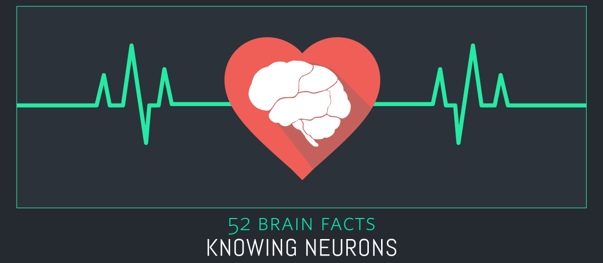 48_Heartbeat_Cover_Knowing-Neurons