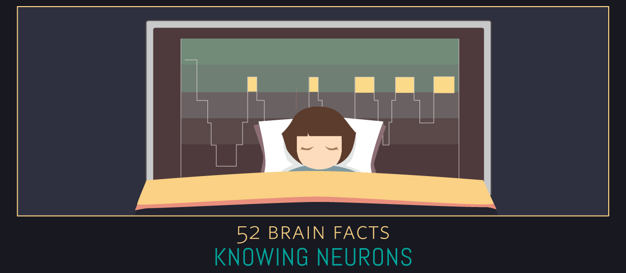 Myth or Fact? Your brain paralyzes your body when you sleep.
